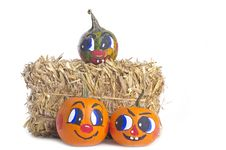 Free Small Pumpkins And A Bale Of Hay Stock Images - 21363434