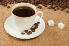 Free Coffee Stock Image - 21363561
