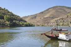 Free Douro Region Royalty Free Stock Images - 21369479