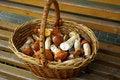 Free Basket Of Mushrooms Royalty Free Stock Images - 21377389
