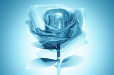 Free 3D Rose Glass Blue Stock Image - 21374491