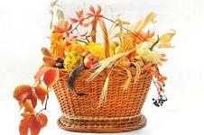 Free Autumnal Basket Over White Royalty Free Stock Photos - 21375008