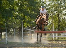 Free Show Jumping Stock Photo - 21375600