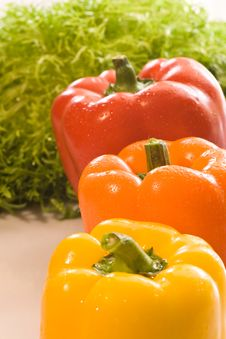 Free Pepper Stock Photos - 21376973