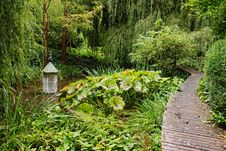 Free An English Woodland Garden With Boardwalk Royalty Free Stock Images - 21378369