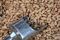 Free Unshelled Almonds And Metal Scoop Stock Photography - 21381322