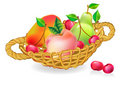 Free Basket With Fruits Collection Royalty Free Stock Images - 21382419