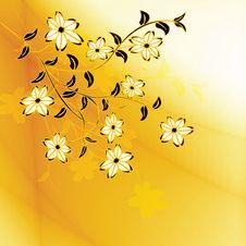 Free Floral Design Stock Photo - 21381380