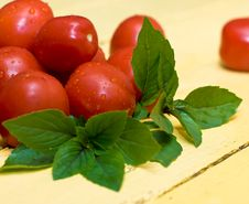 Free Tomatos And Basil Stock Photos - 21382313