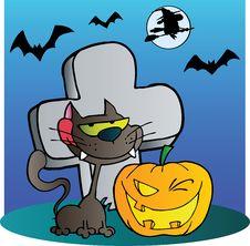 Free Black Cat And Halloween Jackolantern Stock Photo - 21383370