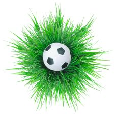 Free Black And White Soccer Ball On Grass. Stock Photo - 21383970