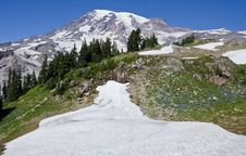 Free Mount Rainier National Park Washington Stock Photo - 21385110