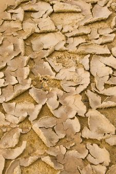 Free Cracked Ground Royalty Free Stock Photography - 21386327