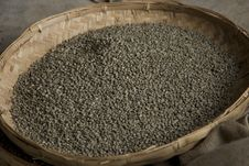 Free Unripened Green Coffee Beans Stock Photos - 21387373