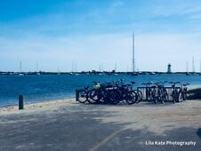 Free Marthas` Vineyard Best Choice Of Wheels.. The Bicycle.. Royalty Free Stock Photography - 213835777