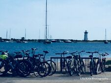 Free Marthas` Vineyard Best Choice Of Wheels.. The Bicycle.. Royalty Free Stock Images - 213835799
