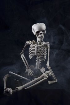 Free Skeleton Holding An Ashtray Royalty Free Stock Image - 21391306