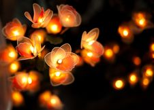 Free Beautiful Candle With Dark Background Stock Photo - 21392980