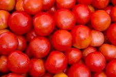 Free Fresh Red Tomato Stock Photo - 21393250