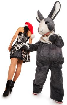 Big Rabbit Flirting With Cute Girl Stock Photography