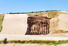 Free Harvested Fields On Hill Slope Stock Photography - 21397232
