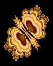 Free Golden Butterfly Stock Photos - 2140303