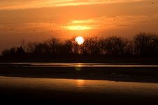Free Sunset And Sandhill Cranes Stock Images - 2140164