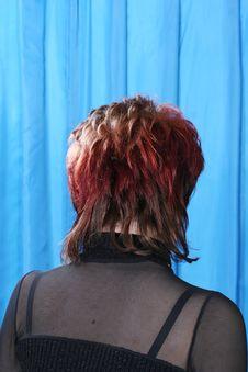 Free Haircut Royalty Free Stock Image - 2145446