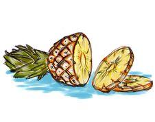 Free Illustration Of Pineapple Stock Image - 2146531