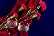 Free Champagne And Carnations Stock Photos - 2149443