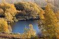 Free Golden Autumn Stock Image - 21404381