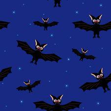 Free Bat In A Dark Blue Sky Royalty Free Stock Image - 21405596