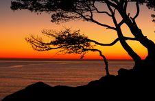 Free Sunrise Royalty Free Stock Photography - 21414057
