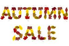 Autumn Sale Stock Photos