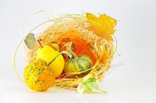Free Autumn S Basket Stock Images - 21432454