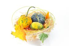 Free Autumn S Basket Stock Photography - 21432462