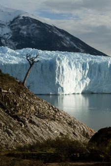 Free The Perito Moreno Glacier Royalty Free Stock Photo - 21436635