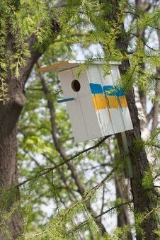 Free Birdhouse In A Tree Royalty Free Stock Photography - 21438037