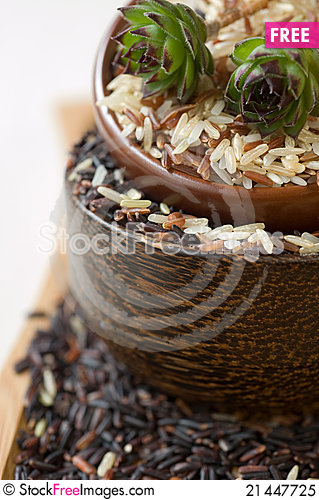 Free Uncooked Rice Inbowls Royalty Free Stock Photo - 21447725