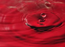 Free Red Water Splash Royalty Free Stock Photo - 21440485