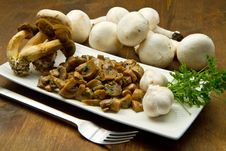 Free Mushrooms Royalty Free Stock Photography - 21440977