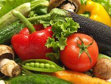 Free Fresh Vegetable Stock Photos - 21445603