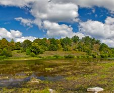 Free Shallow River Near Forest Stock Photo - 21447340