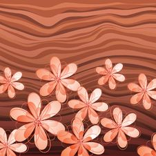 Free Flowers On Wood Background Stock Photography - 21447732