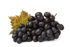 Free Red Grape Stock Images - 21451184