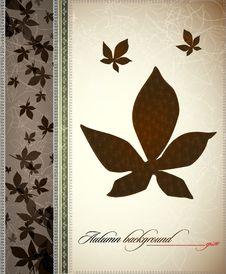 Autumn Vintage Decoration Stock Photos