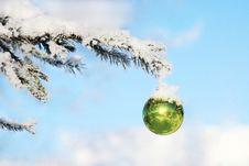 Christmas Toy On A Tree Branch Royalty Free Stock Images