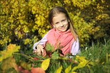 Girl Resting In The Autumn Park Royalty Free Stock Image