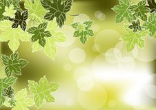 Free Leaves Stock Images - 21466944