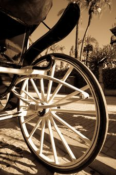 Free Carriage Horse Stock Images - 21467424